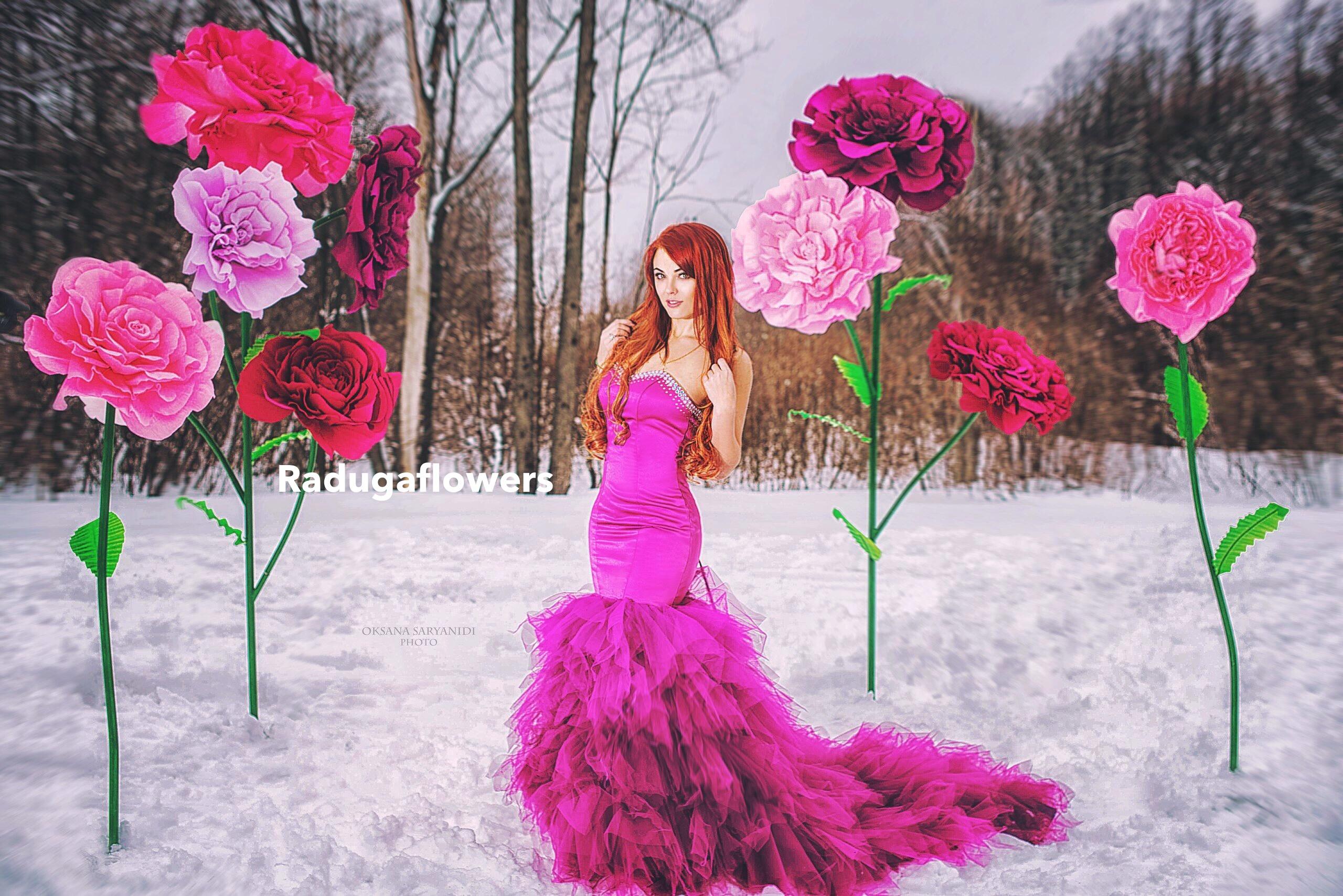 Фото с большим цветком