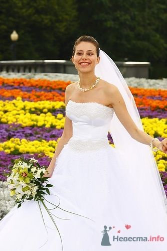 Ирина - фото 4849 Невеста01