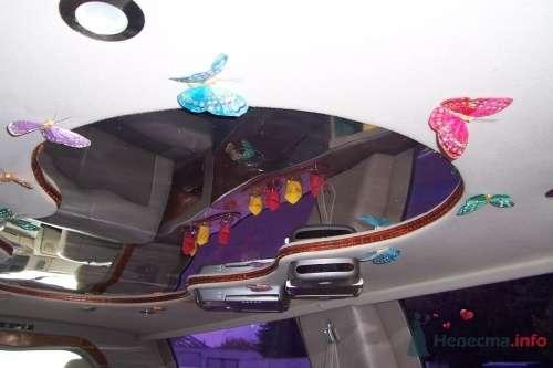 Фото 4770 в коллекции лимузин на свадьбу (18 мест) - Toplim - аренда транспорта