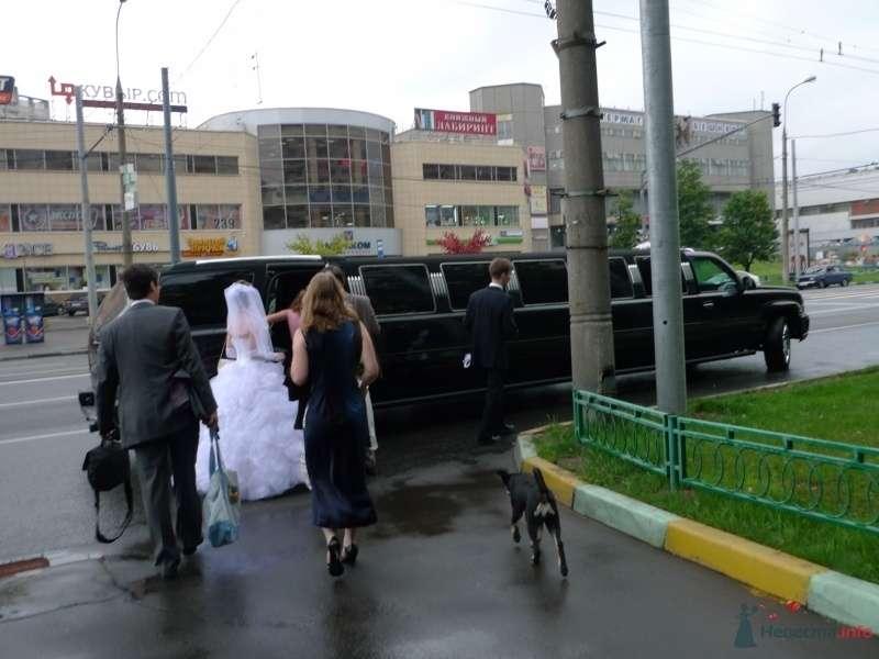 Фото 34559 в коллекции наша свадьба - Настенка