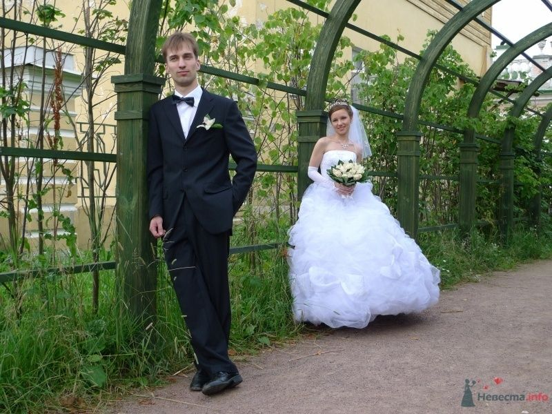Фото 34571 в коллекции наша свадьба - Настенка