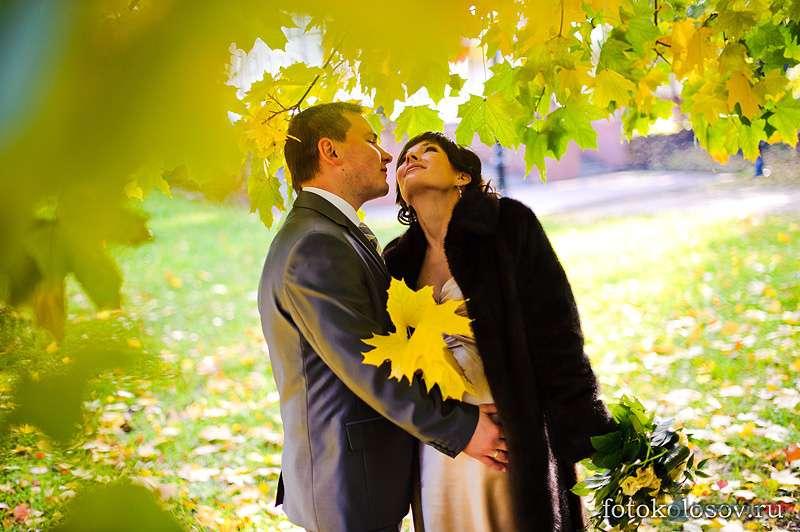 Фото 78623 в коллекции Мои фотографии - Свадебный фотограф Колосов Александр