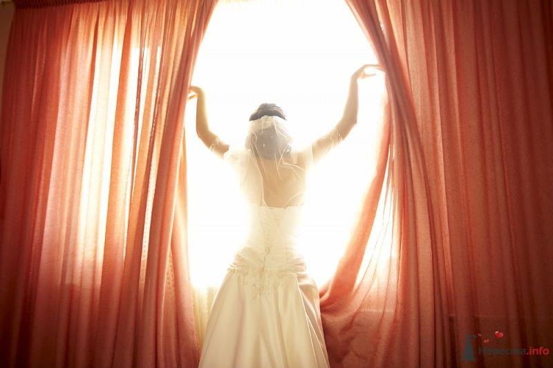 """Фото 27015 в коллекции Свадьба - Свадебное агентство """"Велес"""""""