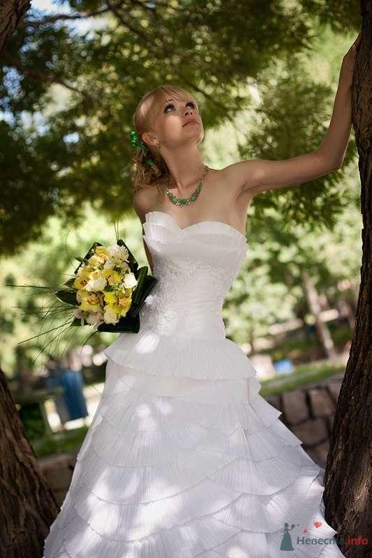 Фото 61194 в коллекции свадебные фотографии - Фотограф Ольга Кедрова