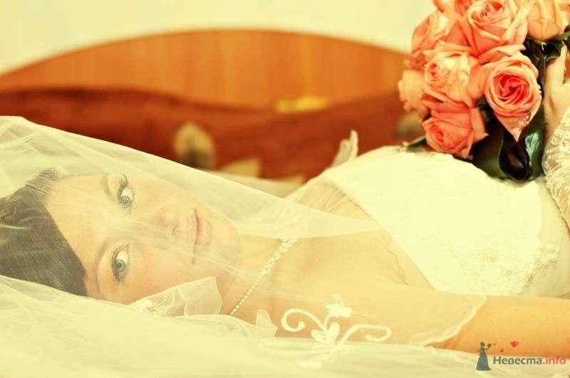 Фото 63823 в коллекции Свадьбы - Фотограф Сергей Алексеев