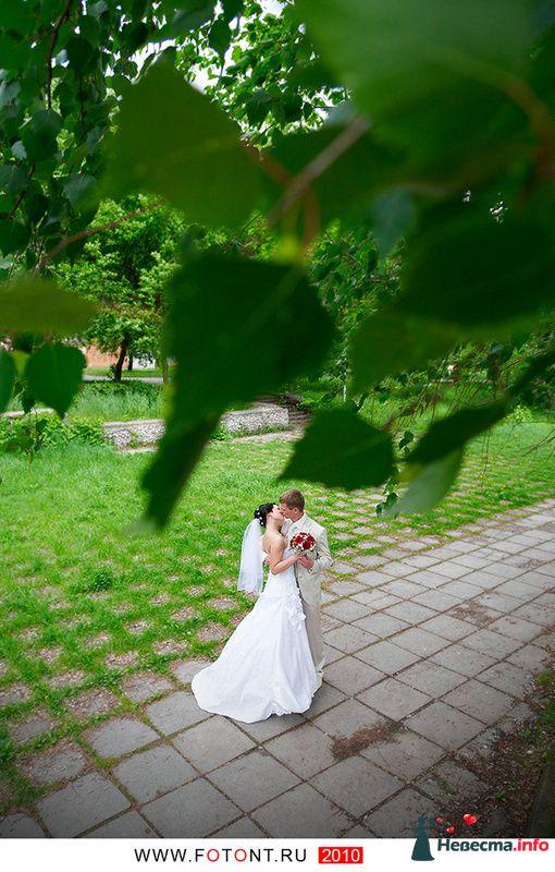 Алексей+Надежда - фото 110534 Фотограф Сергей Алексеев