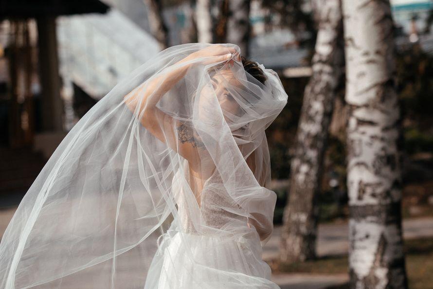 Фото 19715293 в коллекции Свадебные фотографии - Владимир Акуленко - фотограф