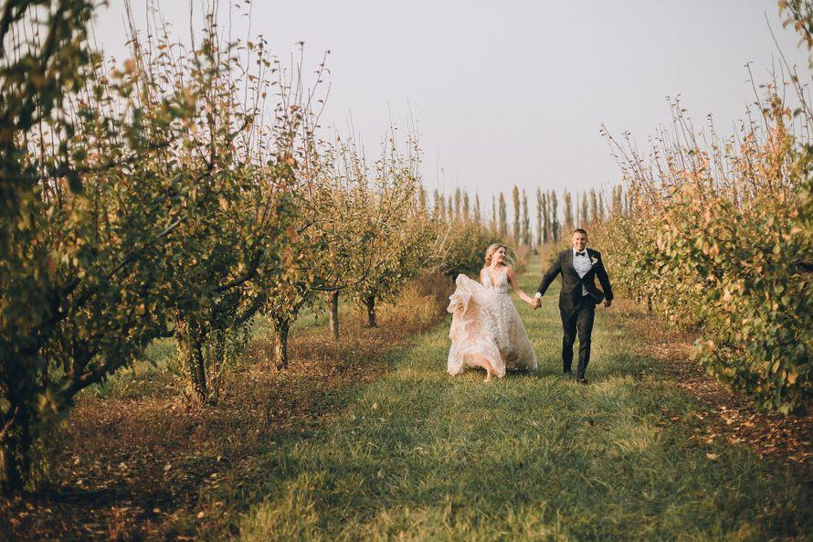 Фото 19728099 в коллекции мои свадьбы - координатор Катя Рычко