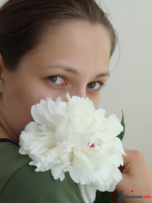Фото 86560 в коллекции Мои фотографии - Lustra