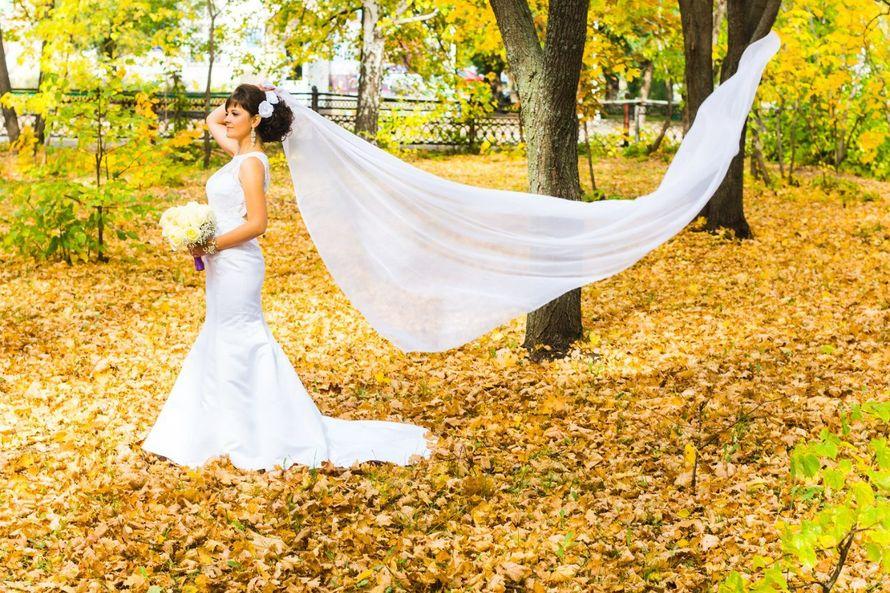 Осень - фото 10182118 Видео-фотомастерская Олега Пенченко