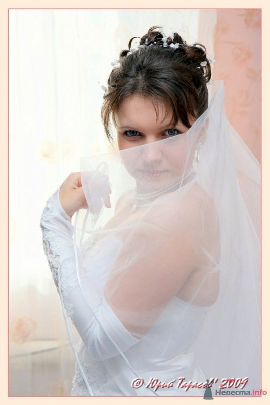 Фото 64143 в коллекции Свадьбы - Cвадебный фотограф Юрий Тарасов