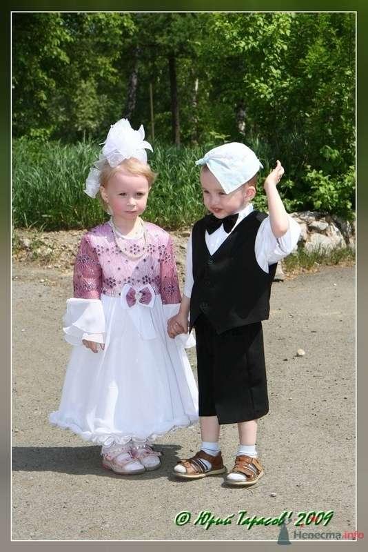 Фото 80174 в коллекции Свадьбы - Cвадебный фотограф Юрий Тарасов