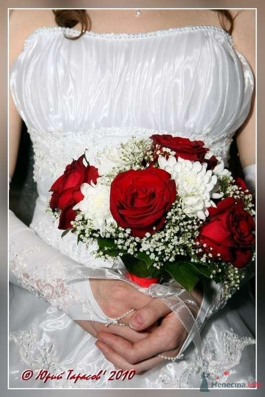 Фото 80185 в коллекции Свадьбы - Cвадебный фотограф Юрий Тарасов