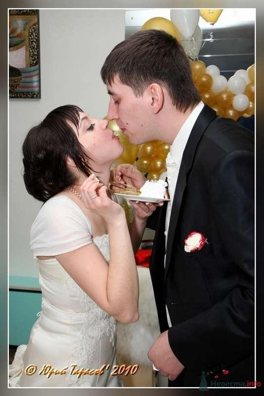 Фото 80254 в коллекции Свадьбы - Cвадебный фотограф Юрий Тарасов