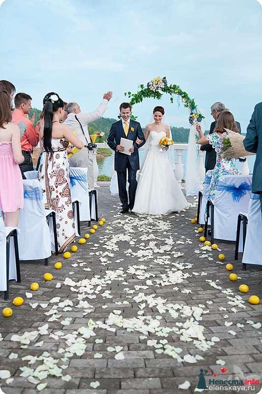 Фото 108574 в коллекции My lemon&camomile wedding - Shuga