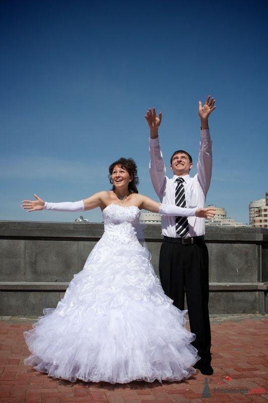 """Свадьба Димы и Светы - фото 66023 Студия """"MAGIQUE"""""""