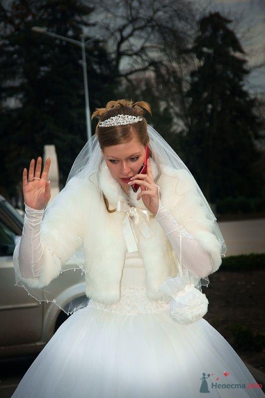 Свадьба - фото 65829 Фотограф Леонид Шафтан