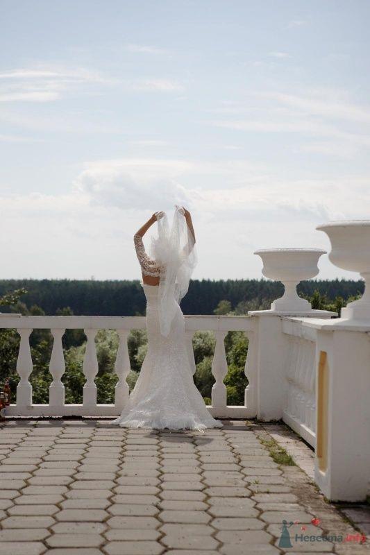 Фото 58440 в коллекции свадьба - turpar