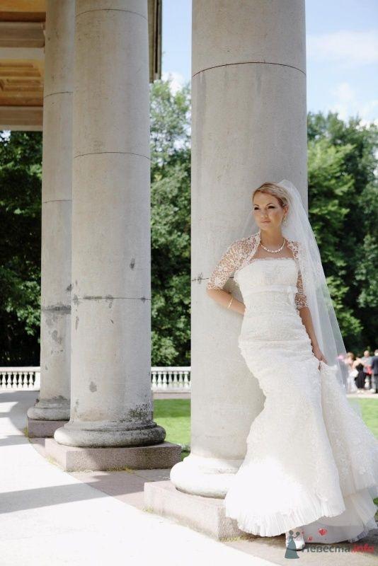 Фото 58446 в коллекции свадьба