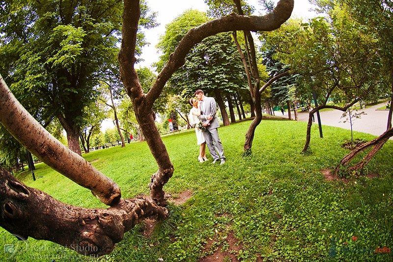 Фото 36382 в коллекции Свадебное фото - Фотограф Радосвет Лапин