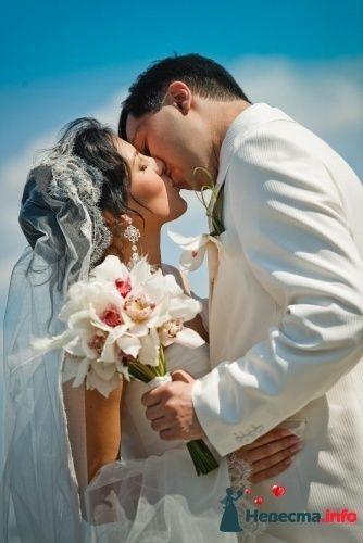 Фото 90154 в коллекции Букет невесты, подружек, и бутоньерка жениха! - Невеста Настенька