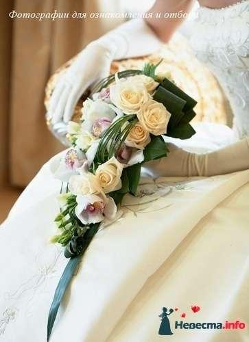 Фото 90163 в коллекции Букет невесты, подружек, и бутоньерка жениха! - Невеста Настенька