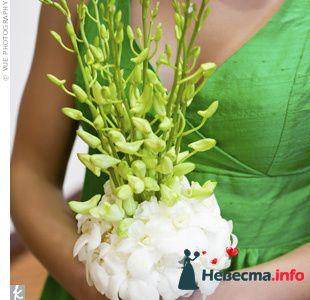 Фото 103267 в коллекции Зеленая свадьба - Невеста Настенька