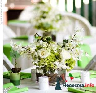 Фото 103268 в коллекции Зеленая свадьба - Невеста Настенька