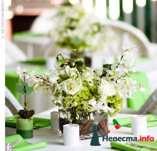 Фото 103268 в коллекции Зеленая свадьба