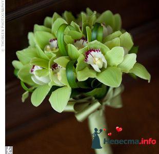 Фото 103279 в коллекции Зеленая свадьба - Невеста Настенька