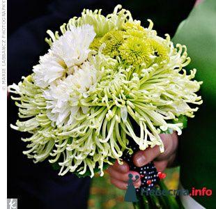 Фото 103289 в коллекции Зеленая свадьба - Невеста Настенька