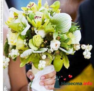 Фото 103290 в коллекции Зеленая свадьба - Невеста Настенька