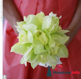 Фото 103318 в коллекции Зеленая свадьба - Невеста Настенька
