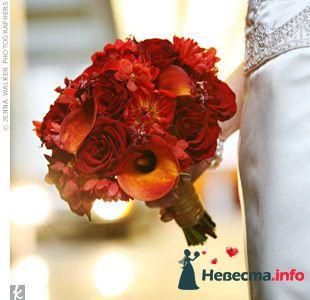 Фото 103366 в коллекции Красная свадьба! - Невеста Настенька