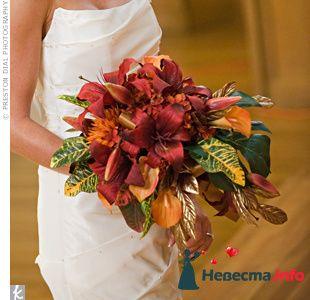 Фото 103371 в коллекции Красная свадьба! - Невеста Настенька