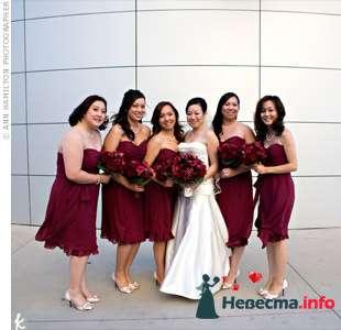 Фото 103386 в коллекции Красная свадьба! - Невеста Настенька