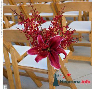 Фото 103399 в коллекции Красная свадьба! - Невеста Настенька