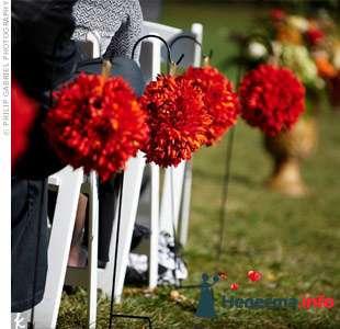 Фото 103402 в коллекции Красная свадьба! - Невеста Настенька