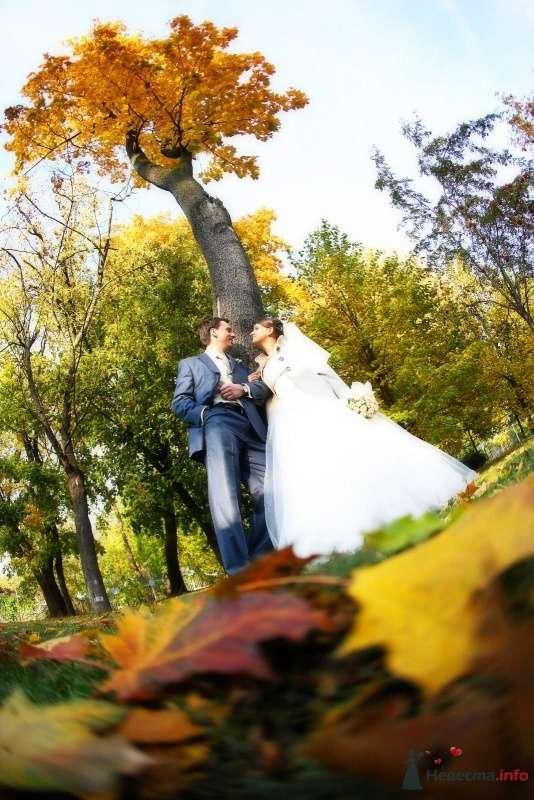 Фото 65817 в коллекции Свадебная подборка - Авторская видеография Сергея Дорохина(Dvcamstudio)