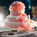 торт был самым вкусным из всех, что когда-либо пробовали