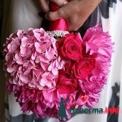 Фото 103419 в коллекции цветочки - леденец (Даша)