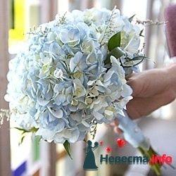 Фото 103421 в коллекции цветочки - леденец (Даша)