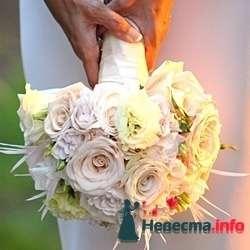 Фото 103422 в коллекции цветочки - леденец (Даша)