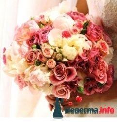 Фото 103425 в коллекции цветочки - леденец (Даша)