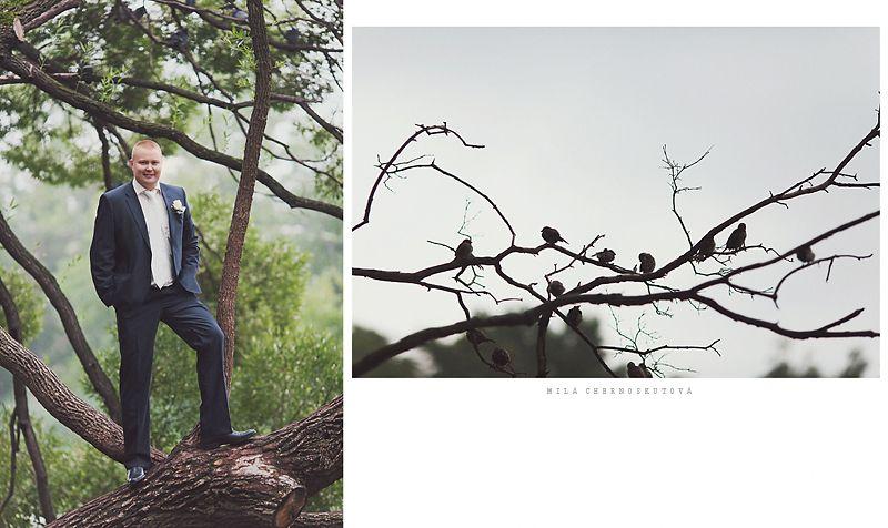 """Классический синий костюм жениха """"двойка"""" с белой рубашкой, белым галстуком и с  белой бутоньеркой в петлице пиджака - фото 1392049 Фотограф Людмила Черноскутова"""