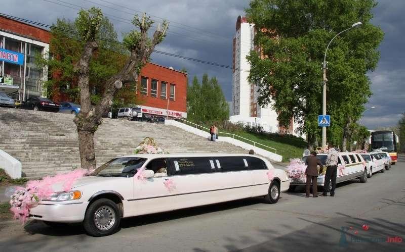 Фото 68988 в коллекции Свадебный Flashmob 1.  - Организатор торжеств Антон Уткин