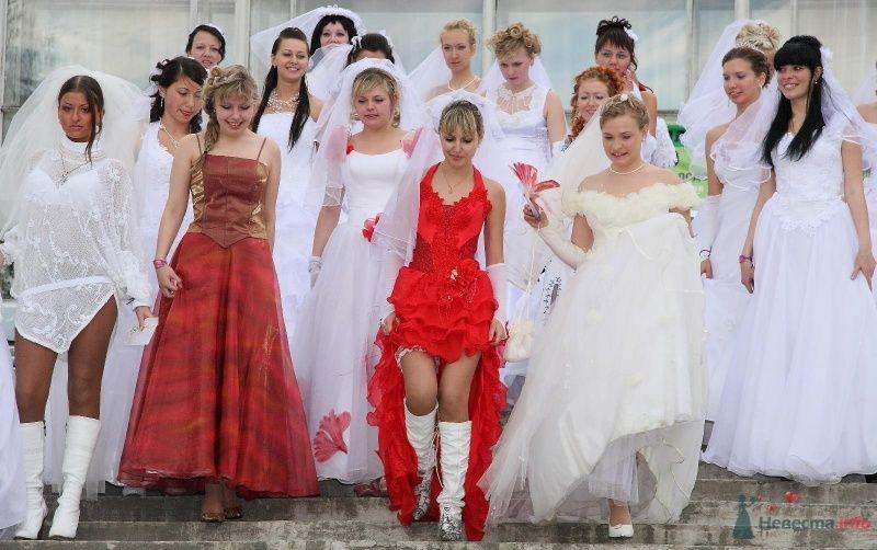Фото 68989 в коллекции Свадебный Flashmob 1.
