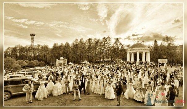 """Фото 68999 в коллекции Свадебный Flashmob 2 """"гламур и брутальность"""""""