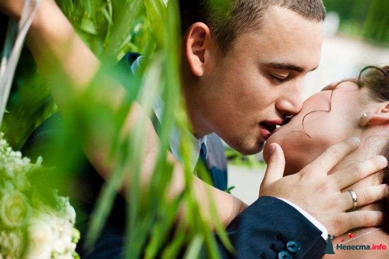 Фото 342937 в коллекции Свадебный альбом 2010  - Фотограф Тихонов Эдвард