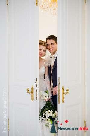 1 - фото 87043 Свадебный фотограф Григорьева Марина